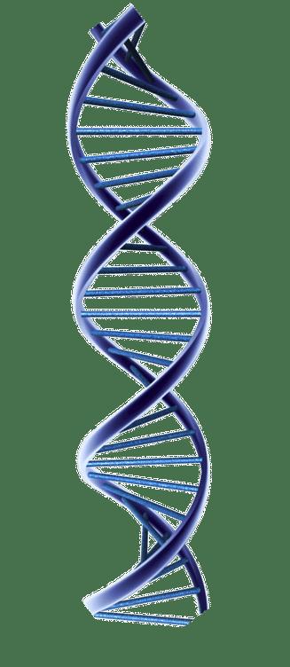 genomic data processing