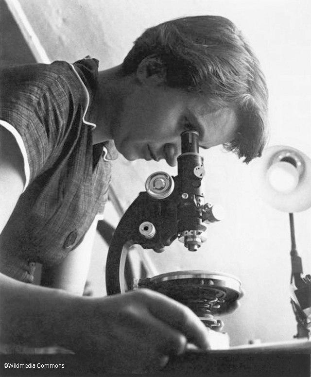 Rosalind Franklin - World DNA Day 2021
